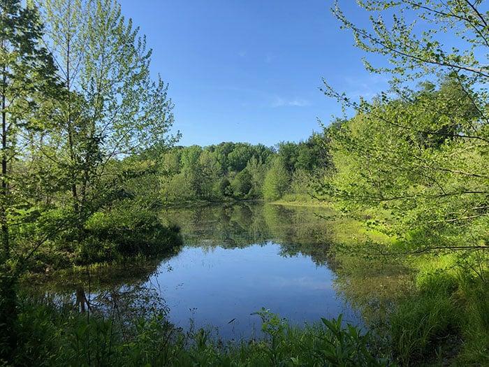 Hiking Trails in North Carolina Brumley Nature Preserve Chapel Hill NC