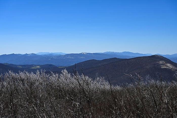 Hiking Trails in North Carolina Elk Knob State Park Summit Trail Late Spring