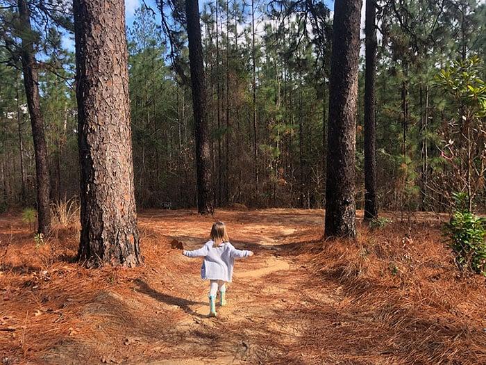 Hiking Trails in North Carolina Weymouth Woods Sandhills Nature Preserve