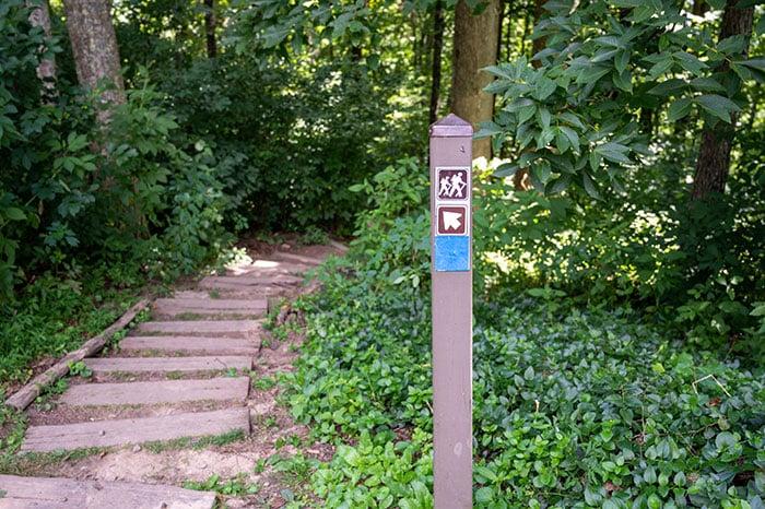 Jump Off Rock Hiking Trails