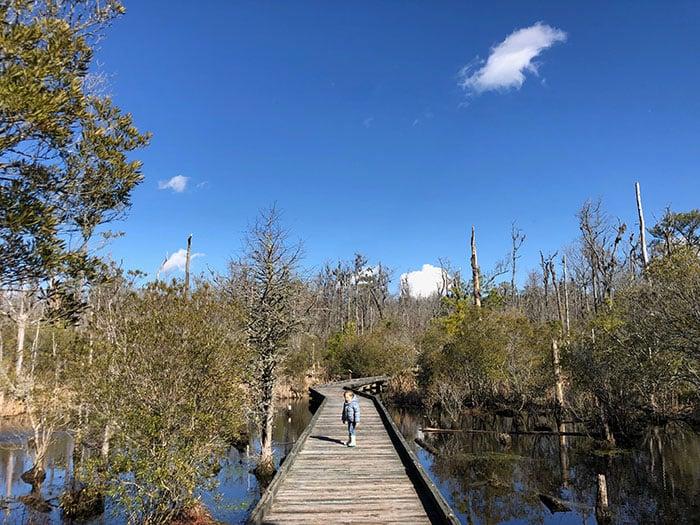 NC State Parks Goose Creek