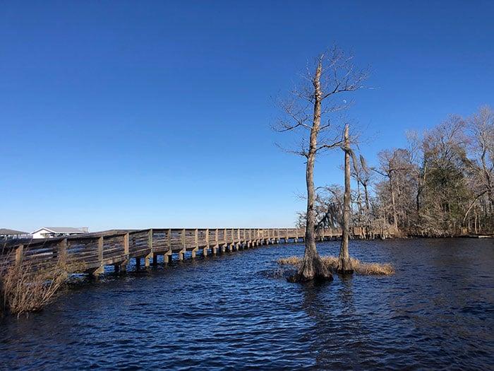 NC State Parks Lake Waccamaw