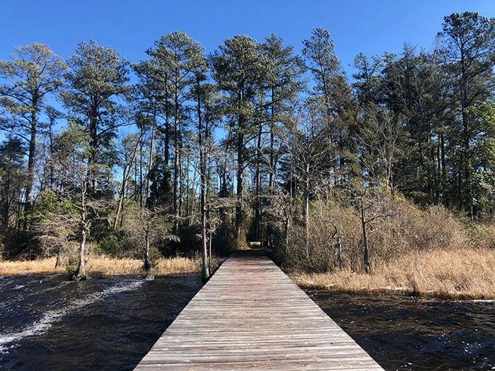 NC State Parks Singletary Lake