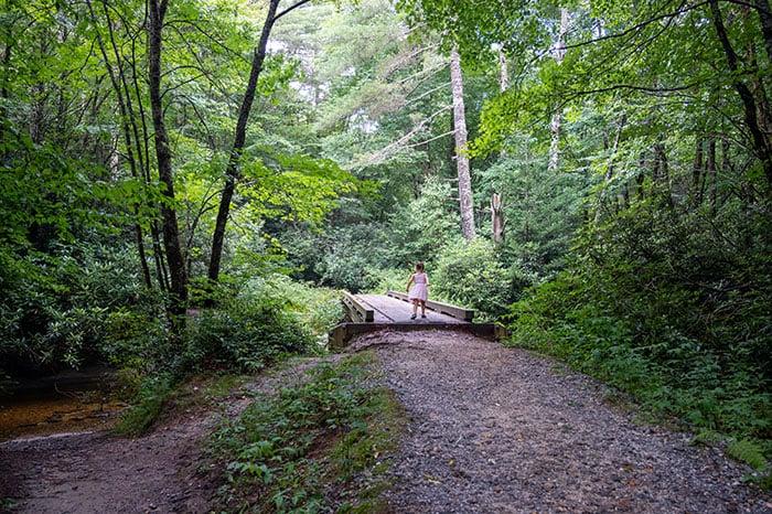 Schoolhouse Falls Hike Bridge