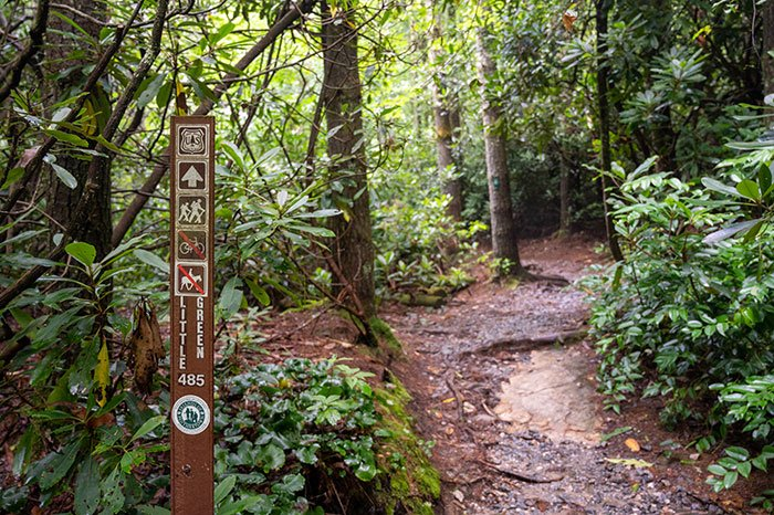 Schoolhouse Falls Hike Little Green Trail