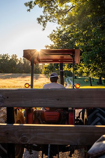 Day Trips from Greensboro summerfield farms