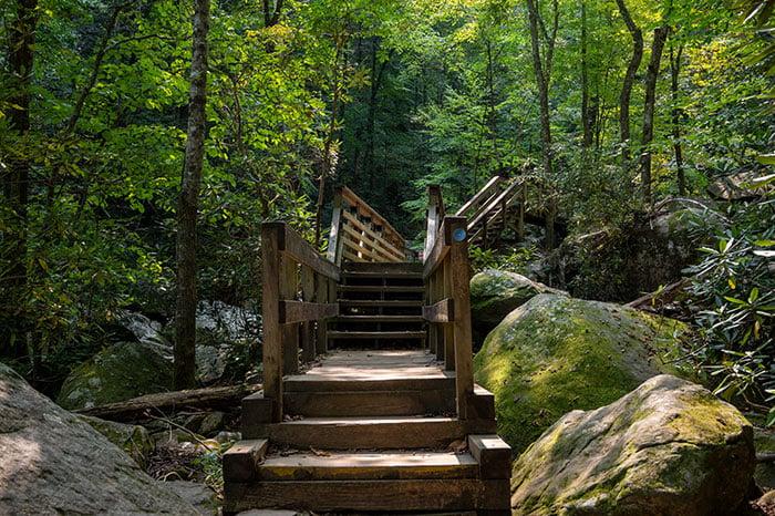 High Shoals Fall Trail