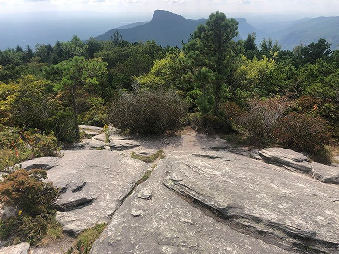 Hikes near Asheville Hawksbill Mountain Trail Linville Gorge