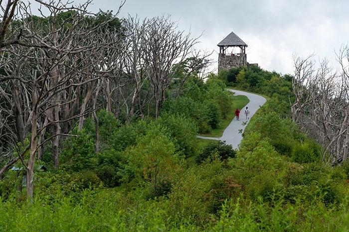 Hikes near Asheville