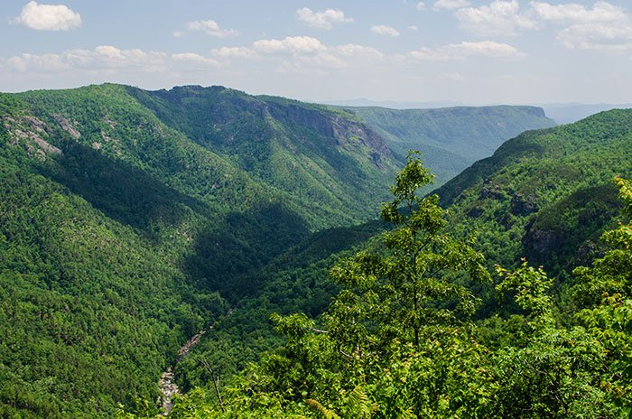 Linville Gorge Wilderness from Wisemans View