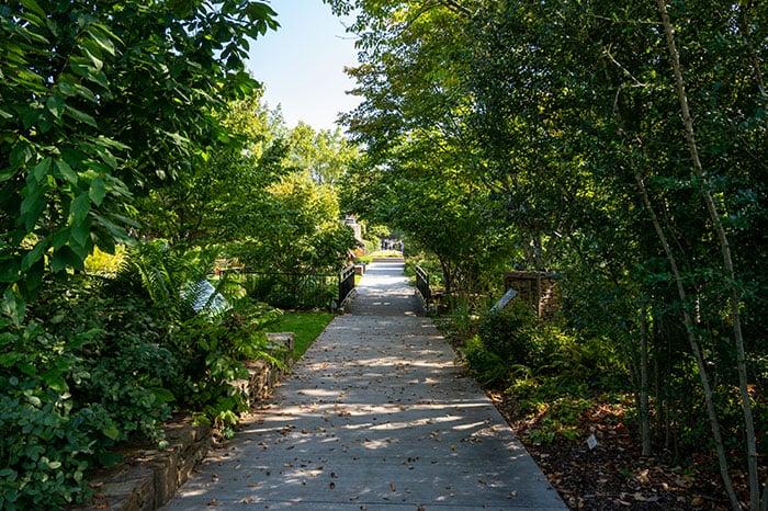 NC Arboretum walking