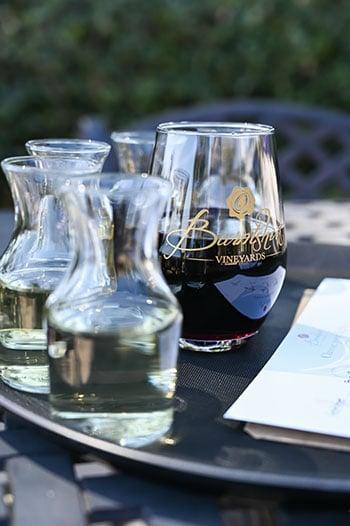 Things to do in Hendersonville Burntshirt Vineyards