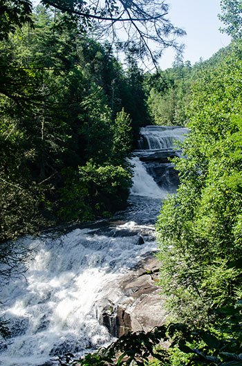 Things to do in Hendersonville Dupont State Forest