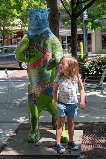 Things to do in Hendersonville bears