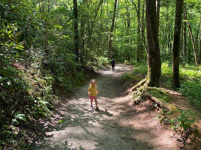 Toms Creek Falls North Carolina