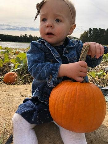 NC Pumpkin Patches Hill Ridge Farms