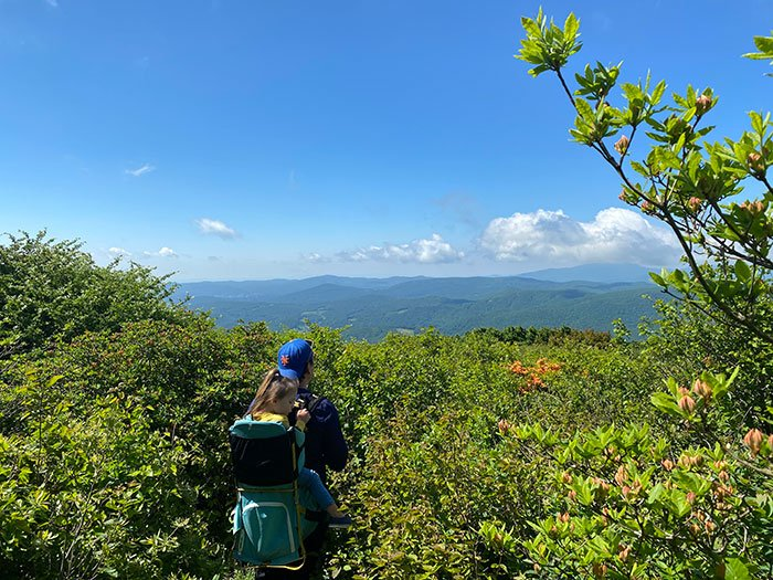 Things to do in Boone Elk Knob State Park